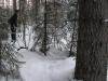 rusakko-ja-janis-010213-16